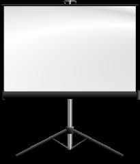 Аренда Экран прямой проекции Экран для проектора в г.Ростов-на-Дону и ЮФО